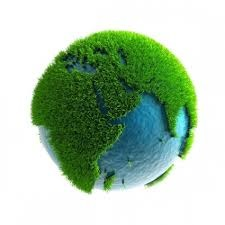 Green Earth Cleaning Tips